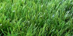 Artificial lawn, monofilament of 40 mm