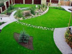 Artificial lawn in Almaty