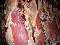 Beef, frozen, Kostanay
