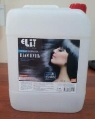 Shampoo for all types of hair of 5 l