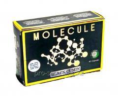 Фатзорб FATZOrb в железной банке - 36 капсул для похудения.