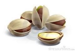 Pistachios wholesale