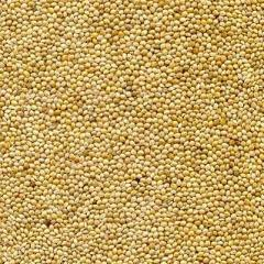 Millet decorative