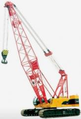 Cranes are caterpillar, Grandmash LLP