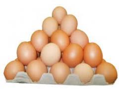 Яйцо куриные