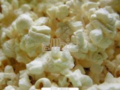 Попкорн. Зерна кукурузы для приготовления попкорна
