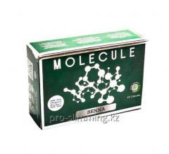 Фатзорб (FATZOrb) - Капсулы для похудения.