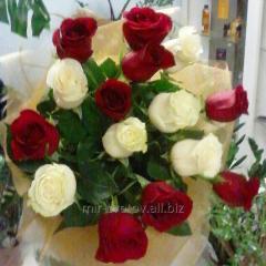 Букет Микс из красных и белых роз