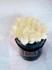 Розы белые в коробке MAISON des FLEURS