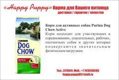 Корм для собак - Корм для активных собак