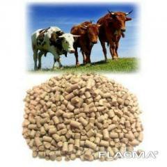 Комбикорма для лошадей, верблюдов, баранов