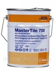 MasterTile EPO 700 / (EPOFUGA) серый, заполнитель