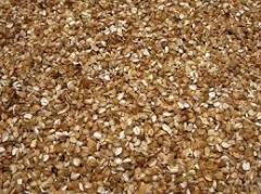 Buckwheat sechka