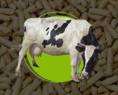 Granulated alfalfa