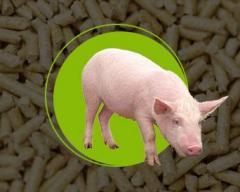 Корма для мясного откорма свиней  СКК 55