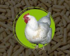 Комбикорма для Цыплят 1-28 дней