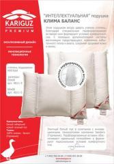 Clima balance pillow