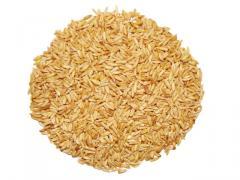 The oats peeled