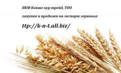 Закупка и реализация зерновых культур