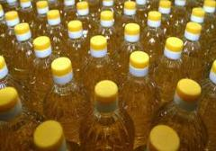 Sunflower oil of cold extraction