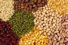 Grain, buckwheat, pearl-barley, barley