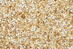 Grain barley
