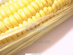 The corn is food