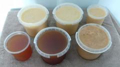 Мёд Оптом, у Пчеловода