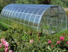 Sheets of cellular polycarbonate, greenhouse
