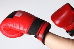 Gloves for a kickboxing