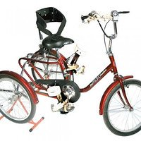 The bicycle rehabilitation for the disabled child