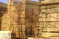 Preparations of the wood for europallets from the