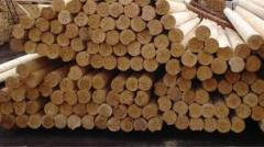 Bar a round timber from the producer of Altey.kz