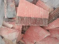 Akama tuna (blyufin)