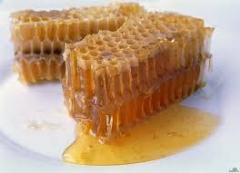Honey in honeycombs from the producer, natural
