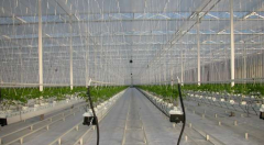 Covering for greenhouses of D-FUSE