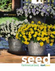 Panamerican SEEDS flowers seeds
