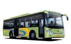 SHACMAN buses SX6112 model