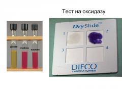 Тест На Оксидазу 50 Дисков (Fluka 70439)