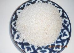 Milled rice