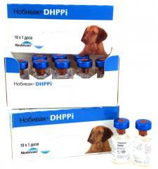 Nobivak DHPPi vaccine against plague of
