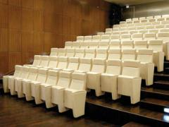 Театральное кресло Бизнес