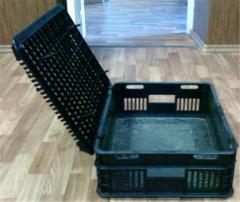 Box chern. for transportation of a bird, rabbits,