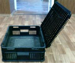 Boxes for transportation of a bird, rabbits, pigs