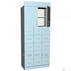 Case office/pharmaceutical article of ShD-011