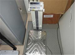 Весы напольные CAS DB-200
