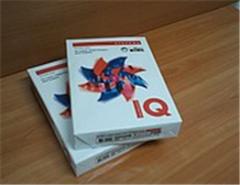 IQ paper A4 forma