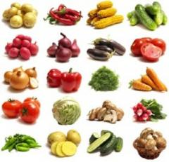 Grant didactic Fruit, berries, nuts