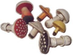 Set of models of mushrooms code 6324