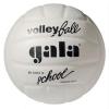 Мячи волейбольные Гала Стандарт